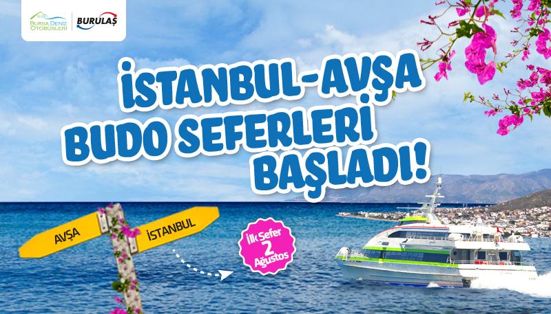 istanbul-avsa