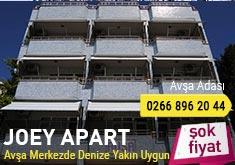 Joey Apart