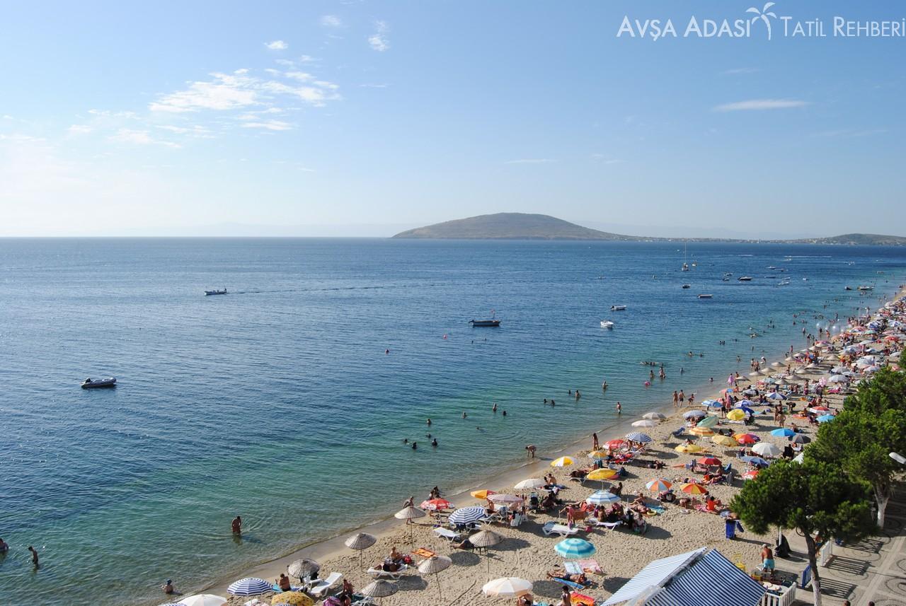 avşa adası plajı