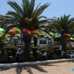 Park-otel-avsa (9)
