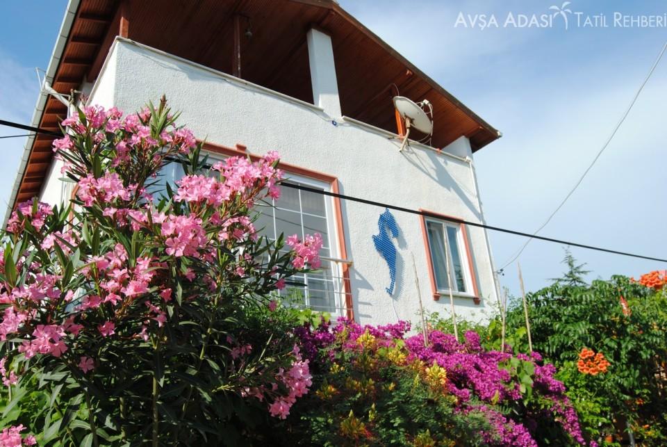 avşa adası apart kiralık