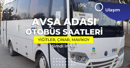avşa adası otobüs saatleri
